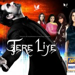 Tere Liye - One of the best rating Indian TV series for TV programming managers